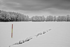 Snowy landscape and snow marker, road marker. Black and white photograph of snowy landscape and snow marker, road marker Stock Photo