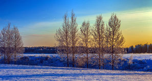 Snowy landscape at sunset Stock Photos