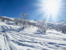 Snowy landscape with sunshine and trees Stock Images
