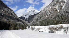 Snowy landscape royalty free stock photo