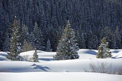 Snowy Landscape Wilderness Stock Images