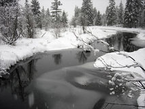 Snowy landscape with windy creek in Whistler Briti Royalty Free Stock Photos
