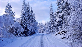 Snowy landscape. Snowy winter road in mountain Stock Photo