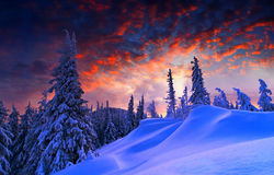 Snowy landscape. Snowy winter landscape at sunset Stock Photos