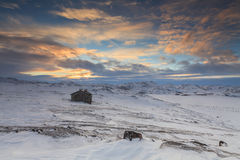 Snowy landscape with  wooden house Stock Photography