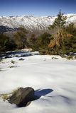 Snowy-Landschaft stockfoto