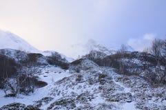 Snowy-Landschaft lizenzfreie stockfotografie