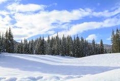 Snowy-Landschaft in den Bergen Stockbilder
