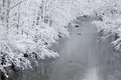 Snowy-Landschaft, kleiner Taube-Fluss Stockbilder