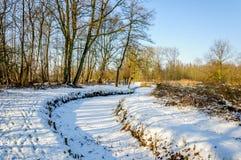 Snowy-Landschaft mit Bäumen und einem gebogenen Abzugsgraben Stockfoto