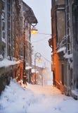 Snowy-Landschaft mit Baum und Schnee Lizenzfreies Stockfoto