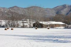 Snowy-Landschaft mit Bergblick Lizenzfreie Stockbilder