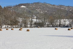 Snowy-Landschaft mit Bergblick Stockfotografie