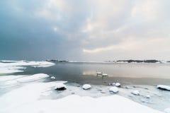 Snowy-Landschaft mit den Felsen und Schwänen, schneiend Stockfotos