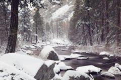 Snowy-Landschaft mit einem Nebenfluss und Kiefern in Yosemite Nationalpark Lizenzfreies Stockbild