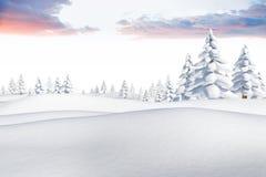 Snowy-Landschaft mit Tannenbäumen Lizenzfreie Stockfotografie