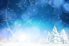 Snowy-Landschaft mit Tannenbäumen Lizenzfreie Stockbilder