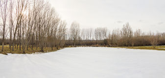 Snowy-Landschaftswiese umgeben durch Bäume Lizenzfreies Stockfoto