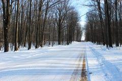 Snowy-Landstraße Lizenzfreies Stockfoto