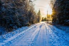 Snowy-Landstraße durch einen winterlichen Kiefernwald bei Sonnenuntergang stockbild