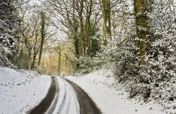 Snowy lane Royalty Free Stock Photo