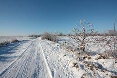 Snowy lane Royalty Free Stock Image
