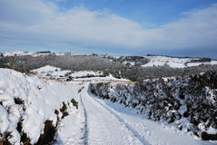 Snowy lane in Dartmoor Royalty Free Stock Photos