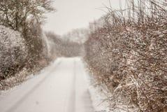 Snowy Lane Stock Photo
