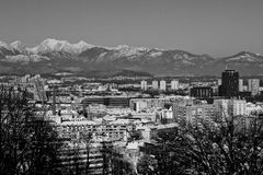 Snowy Ljubljana in black & white Stock Photography