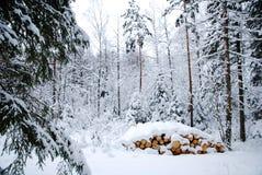 Snowy logpile Royalty Free Stock Photos