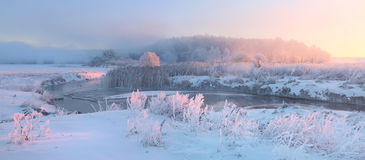 Free Snowy Meadow And Grass With Hoarfrost Illuminaed By Rising Sun. Stock Image - 80958851