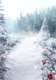 Snowy Meadow. Beautiful snowy pathway in the snow Stock Photos