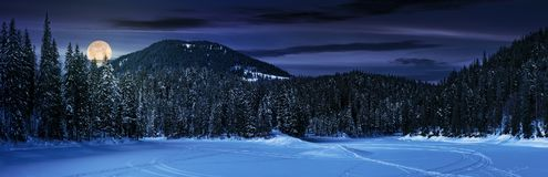 Snowy meadow in winter spruce forest at night. Snowy meadow in spruce forest at night in full moon light. location lake Synevyr Ukraine, frozen in winter Royalty Free Stock Photo
