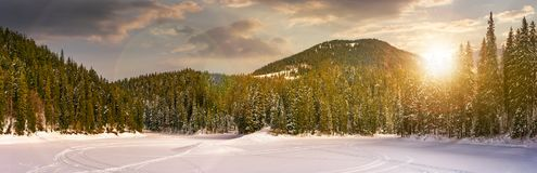 Snowy meadow in winter spruce forest at sunset. Snowy meadow in spruce forest at sunset. location lake Synevyr Ukraine, frozen in winter. beautiful nature Royalty Free Stock Photos