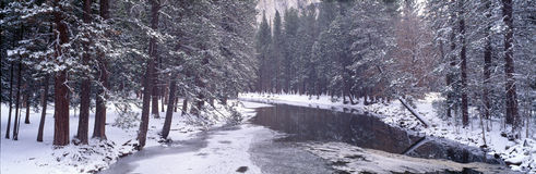 Snowy Merced River in Yosemite Royalty Free Stock Photos