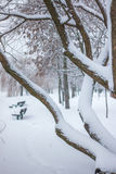 Snowy Minsk im Januar stockbilder
