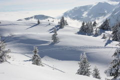 Snowy mountains. A beautiful white snowy landscape in Jura montains. Some pines. Down the mountain a sea of clouds Stock Photo