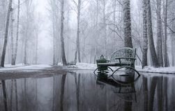 Snowy-Morgen im Park stockfotografie