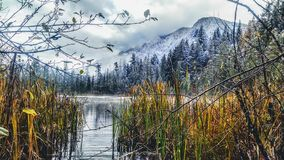 Snowy morning on the lake. Snow on the mountain by the lake Stock Image