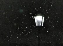 Snowy morning lamppost Royalty Free Stock Photo
