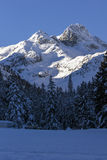 Snowy morning at Malyovitsa peak, Rila Mountain Stock Photos