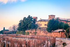 Snowy morning in the vineyard. Snow and ice in the vineyard of Friuli, Italy stock image