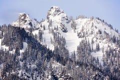 Snowy Mount Alaska Peaks Snoqualme Pass Washington Royalty Free Stock Photo