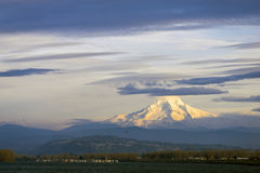 Snowy Mount Hood Portland Columbia Gorge river landscape Royalty Free Stock Photography