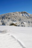 Snowy mountain. Mountains and meadows covered with snow and ice Royalty Free Stock Photo