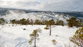 Snowy mountain. On top of snowy mountain in Norway Royalty Free Stock Photography