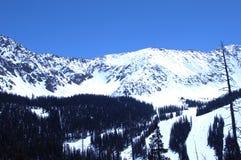 Snowy Mountain 278. Ski resort on snowy Colorado mountain peak Royalty Free Stock Image