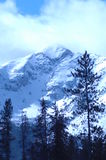 Snowy Mountain. Wind blown snowy peak in the mountains of Colorado Royalty Free Stock Photography