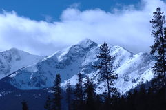 Snowy Mountain. Wind blown snowy peak in the mountains of Colorado Stock Photography