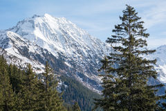 Snowy mountain in the alps Stock Image